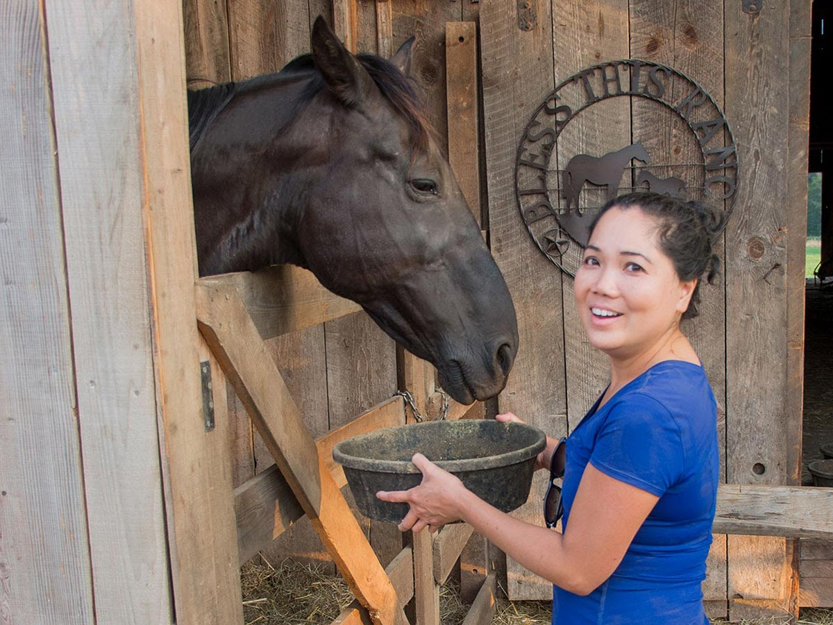 A young woman holds a grain pan for a black horse at the barn